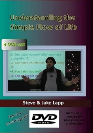 Understanding Simple Flow dvd cover