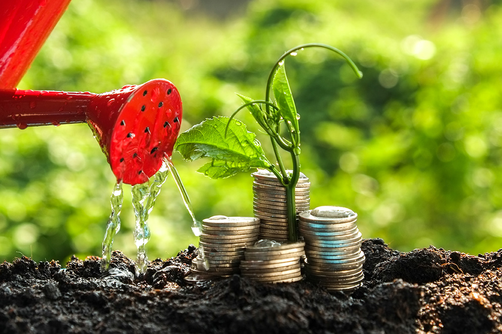 red can watering money growing from soil