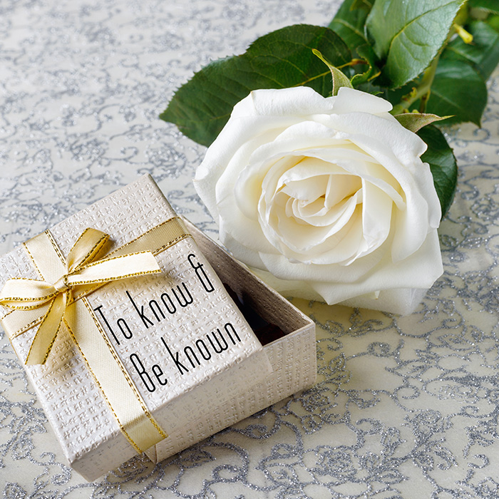 white rose next to gift box
